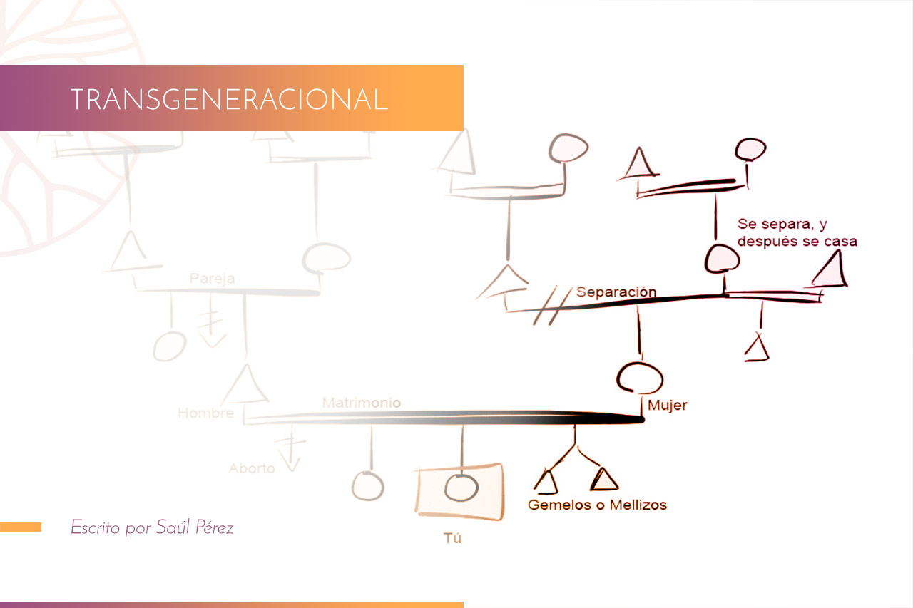 Cómo Hacer Tu árbol Genealógico Saúl Pérez